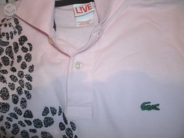 Camisa Lacoste Original Nova Ofertas Vazlon Brasil