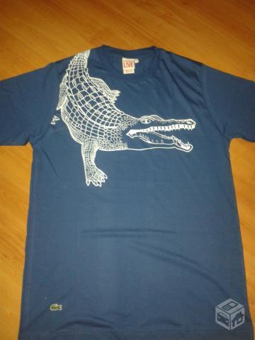camisa lacoste live original   OFERTAS     Vazlon Brasil e78776e2b2