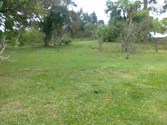 Area Em Campina Do Taquaral M2 Vazlon Brasil