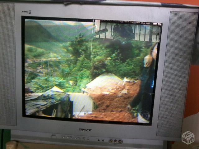 Imperdivel nao existe nada igual duas qmar vazlon brasil - Television pequena plana ...