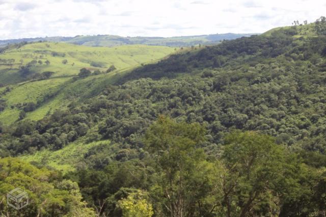 Guapimirim Area De M2 Otimo Acesso Vazlon Brasil
