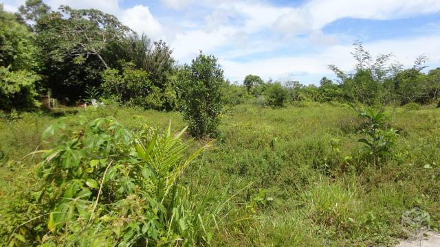 Fazenda Em Pojuca Ba Ofertas Vazlon Brasil
