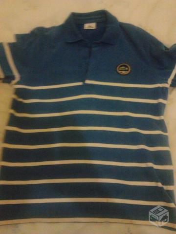 camisa polo lacoste em degrade original   OFERTAS     Vazlon Brasil 07cddd66c5