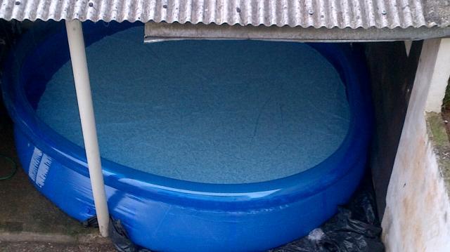 Piscina bestway litros nova ofertas vazlon brasil for Ofertas piscinas bestway