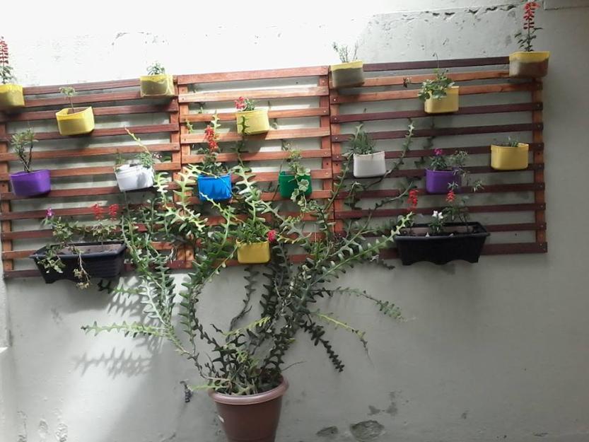 Armario Inox Itatiaia ~ bancos e banquetas em madeira curitiba r compra e Vazlon Brasil