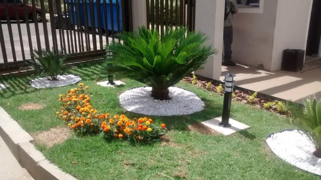 Poda de plantas e jardim vazlon brasil for Paisagismo e jardinagem