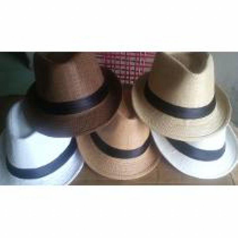 7f153df9fc057 Chapeu estilo panama malandro moda carioca importado