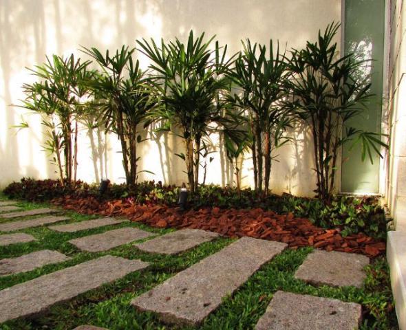 ideias para jardins internos jardinagem jardins internos aromaticos e