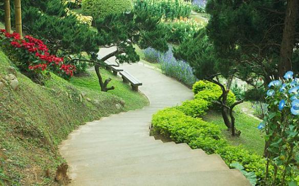 Jardinagem paisagismo e decoracao vazlon brasil for Paisagismo e jardinagem