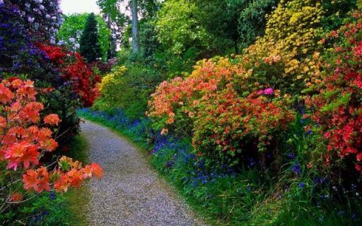 pedras para jardim aki : pedras para jardim aki:floricultura cantinho verde 2 pecas de decoracao para