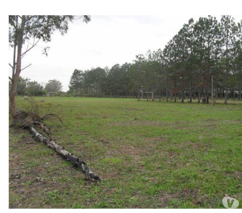 Area De M2 Entre Taubate E Tremembe Apenas R Vazlon Brasil