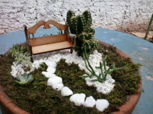 mini jardim de cactos e suculentas ? Doitri.com