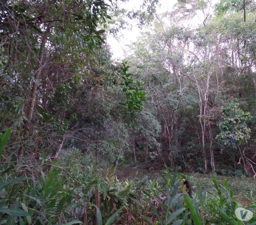 Casa Em Alto Padrao Bairro Lunceia Lagoa R Vazlon Brasil