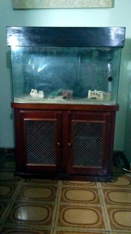 Aquecedor aquario