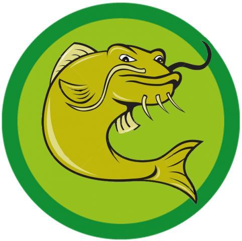 Artigos de pesca online