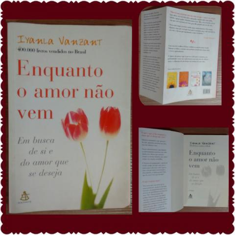 livro enquanto o amor nao vem [ OFERTAS ]   Vazlon Brasil