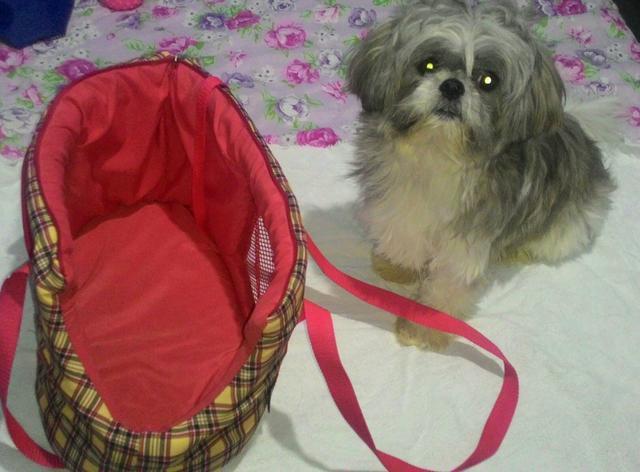 Bolsa Para Carregar Cachorro Pequeno Porte : Bolsa cama para carregar gatos ou cachorro pequeno