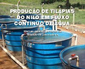 Peixes tilapia ofertas vazlon brasil for Tanques para cria de tilapia