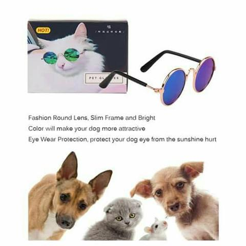 oculos de sol para caes gato   OFERTAS     Vazlon Brasil 7b56322c62